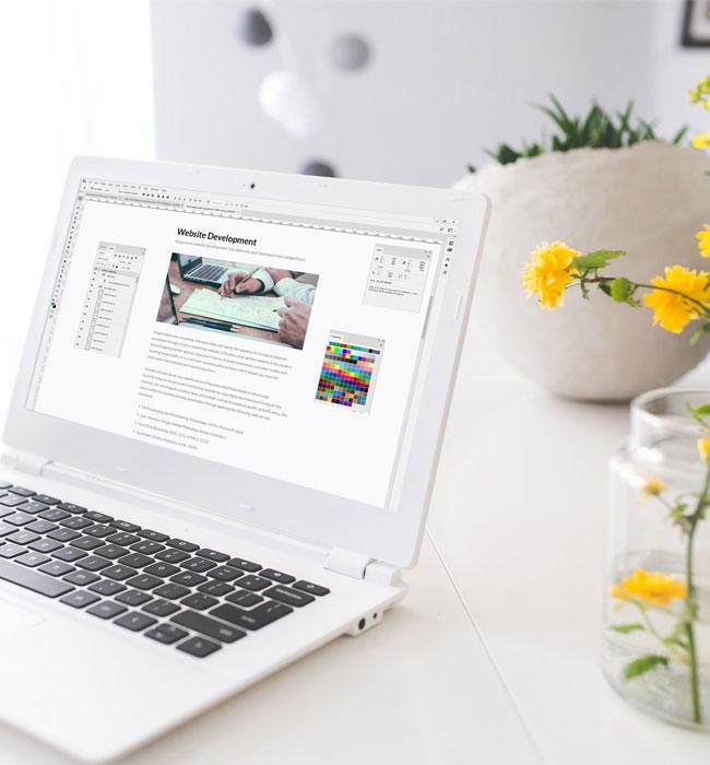 Página Web y Posicionamiento SEO natural